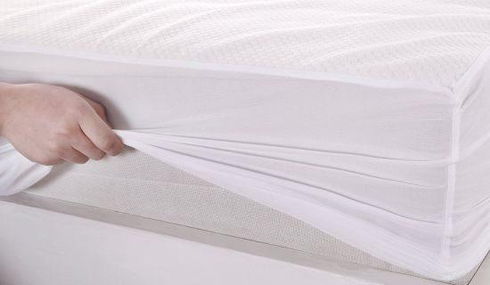 Cara Paling Efektif Menghilangkan Tungau di Tempat Tidur